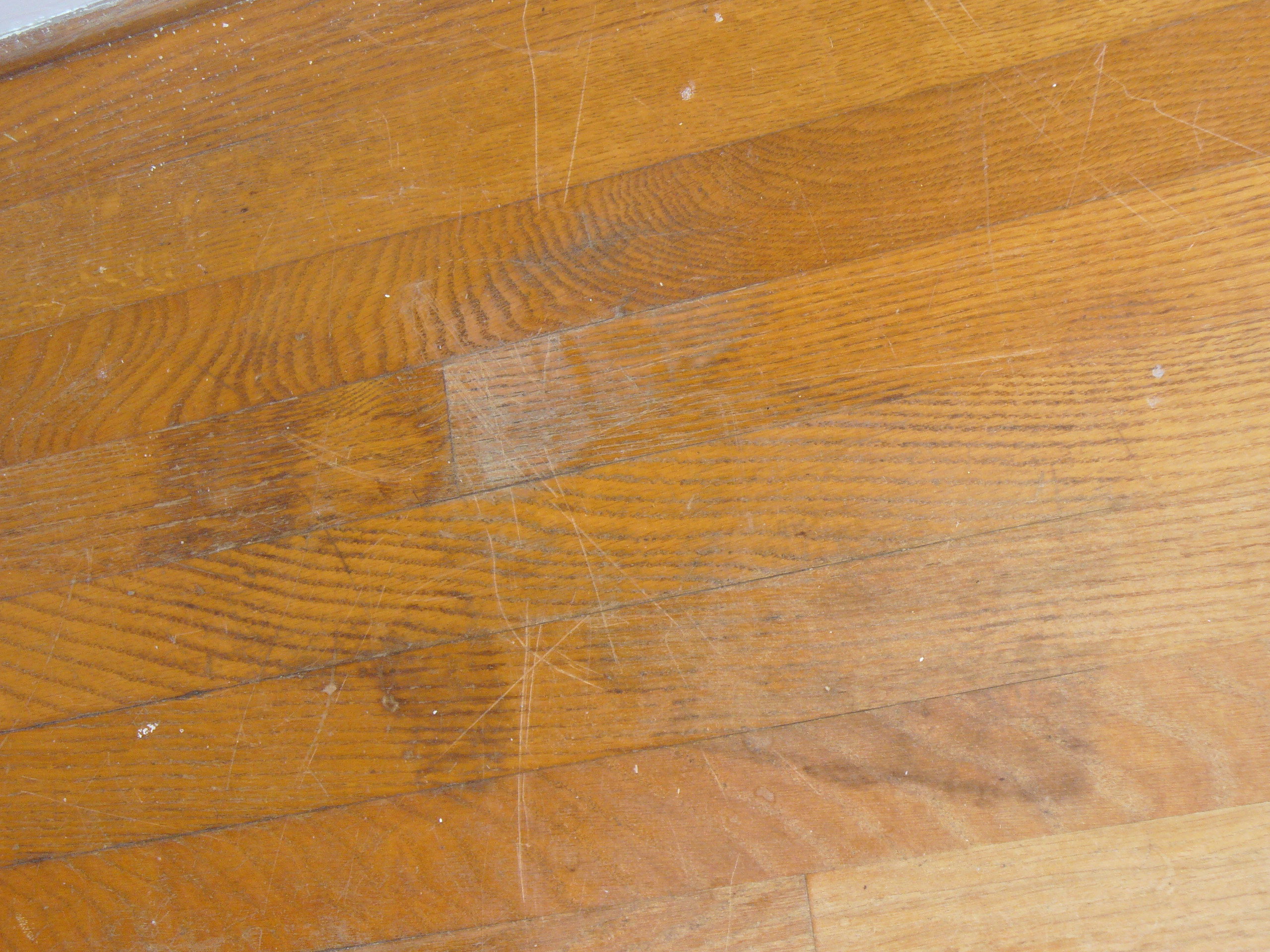 average cost to refinish hardwood floors yourself of cost to refinish wood floors yourself wikizie co with what is sand free hardwood floor refinishing classic cleaning