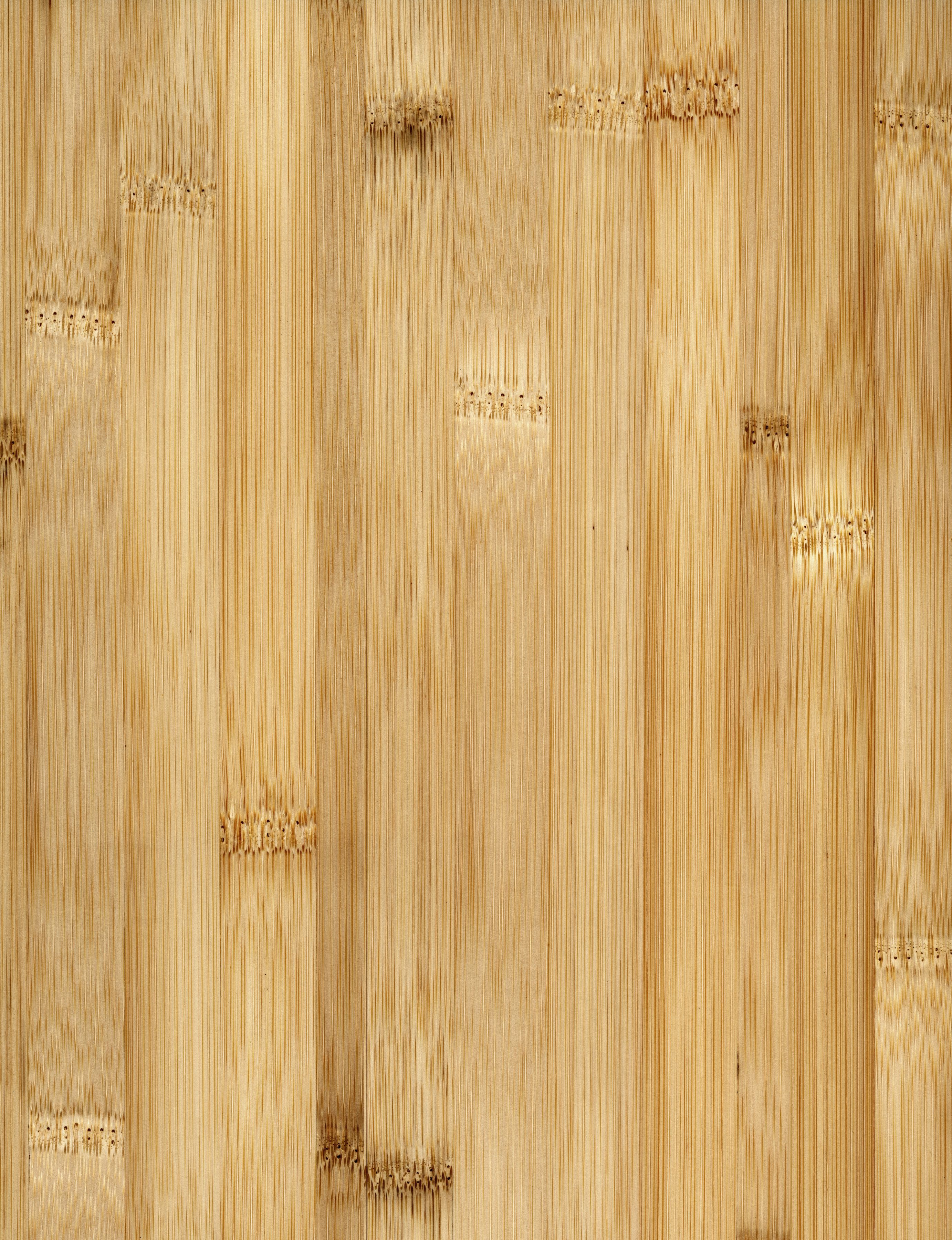 bamboo hardwood flooring reviews of bamboo flooring buying guide throughout bamboo floor full frame 200266305 001 59a4517bd963ac00118a3d9f