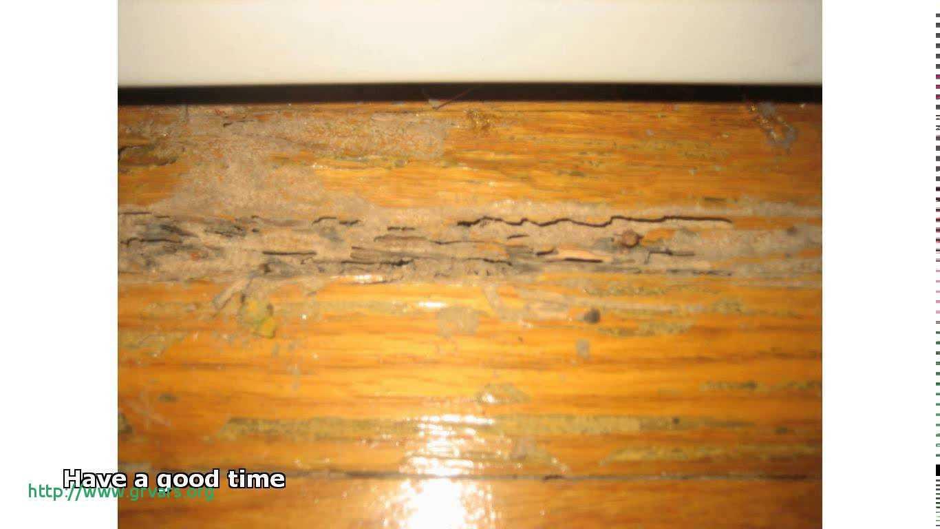 best hardwood floor mop 2016 of 19 meilleur de what is the best mop for wooden floors ideas blog for what is the best mop for wooden floors frais cleaning old hardwood floors