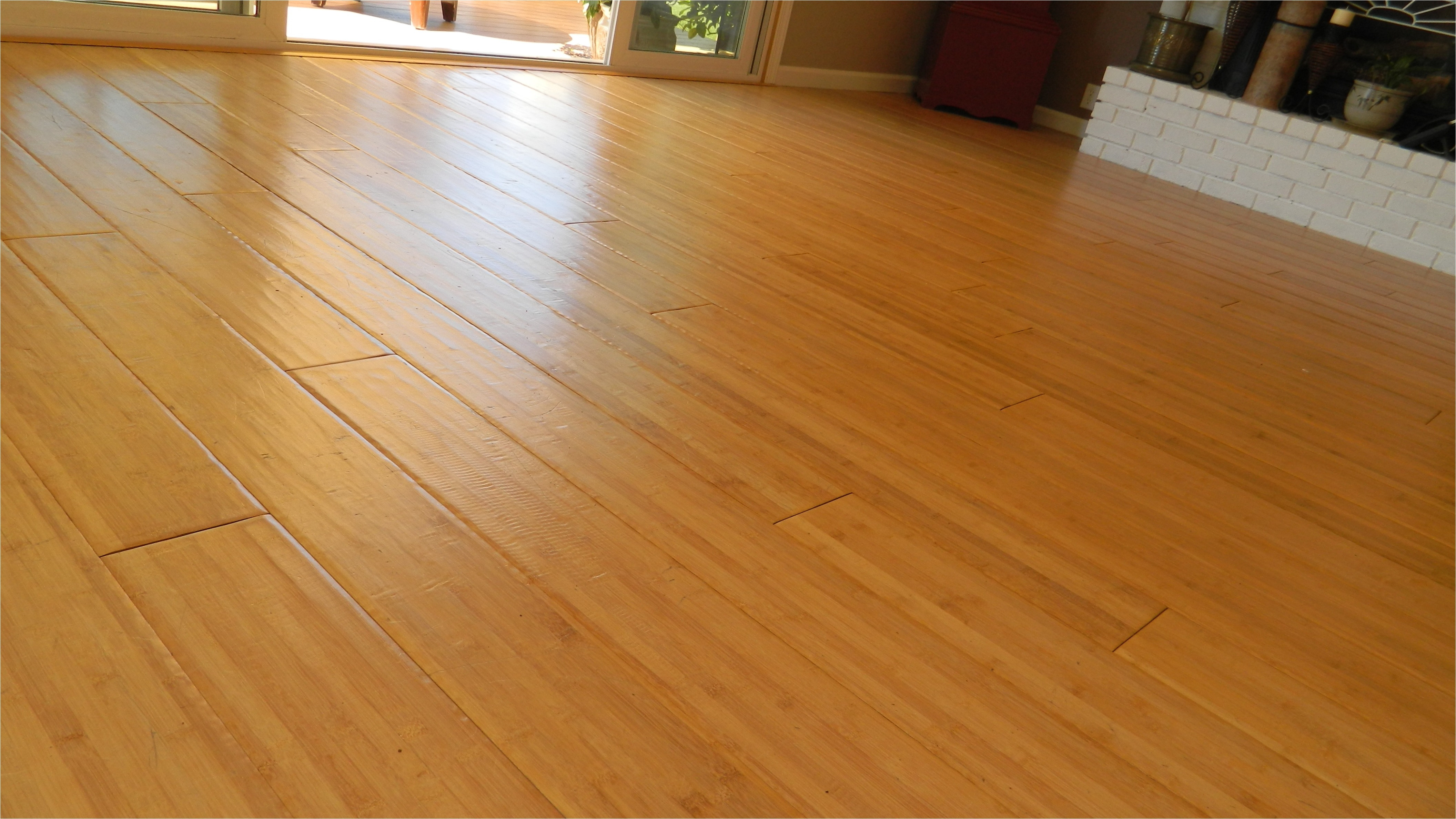 Can You Use Shark Steam Mop On Bamboo Floors