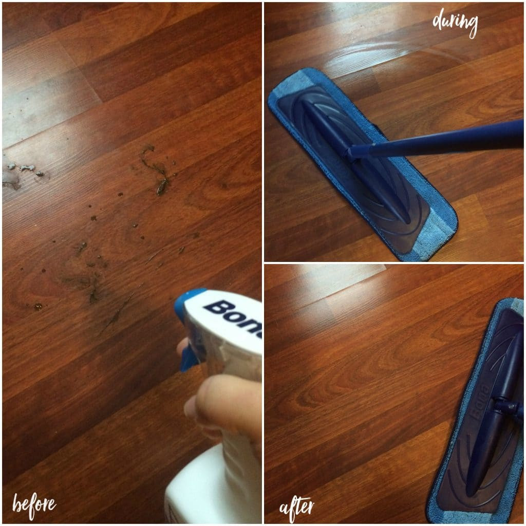 bona hardwood floor cleaner 160 oz of 100 bona wood floor polish 17 bona wood floor regarding 100 bona wood floor polish 17 bona wood floor