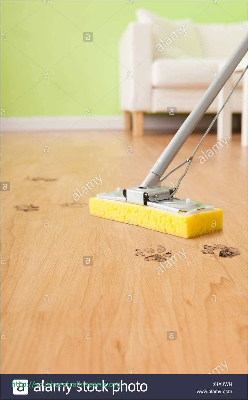 27 Lovely Can You Clean Hardwood Floors With Vinegar
