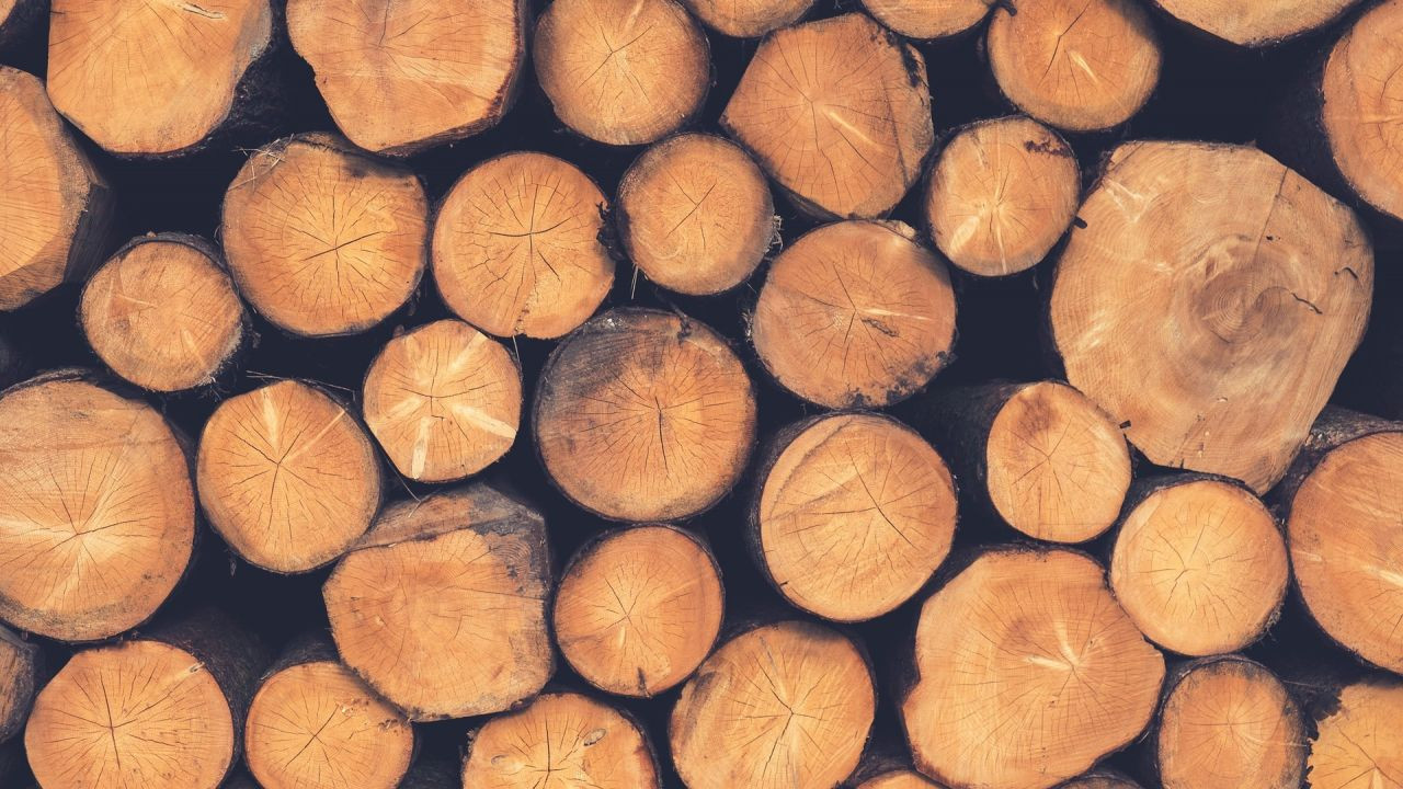 13 Cute Different Types Of Hardwood Floors 2021 free download different types of hardwood floors of different types of wood timber the a z of good wood friends of throughout different types of wood timber the a z of good wood