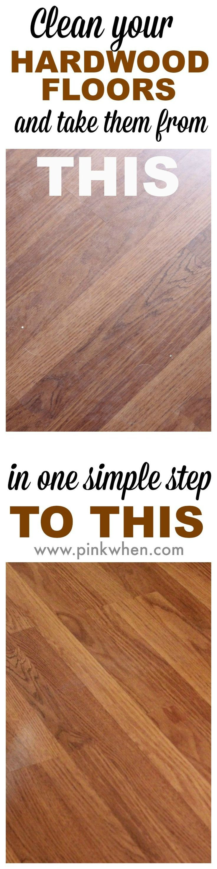Discount Hardwood Flooring Denver Of 19 Awesome Steam Clean Hardwood Floors Images Dizpos Com Intended for 84 Best Hardwood Floor Care Tips Images On Pinterest
