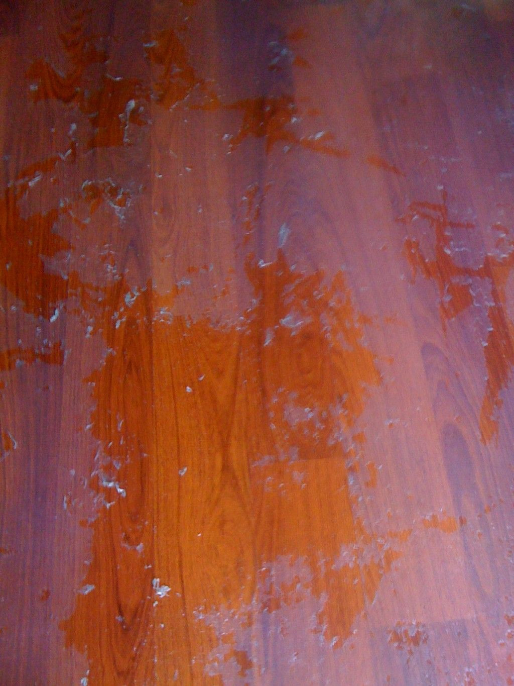 Diy Sand and Stain Hardwood Floors Of How to Remove Wax and Oil soap Cleaners From Wood Floors Recipes Regarding How to Remove Oily or Wax Build Up From Cleaning or Polishing solutions From Wood Floors