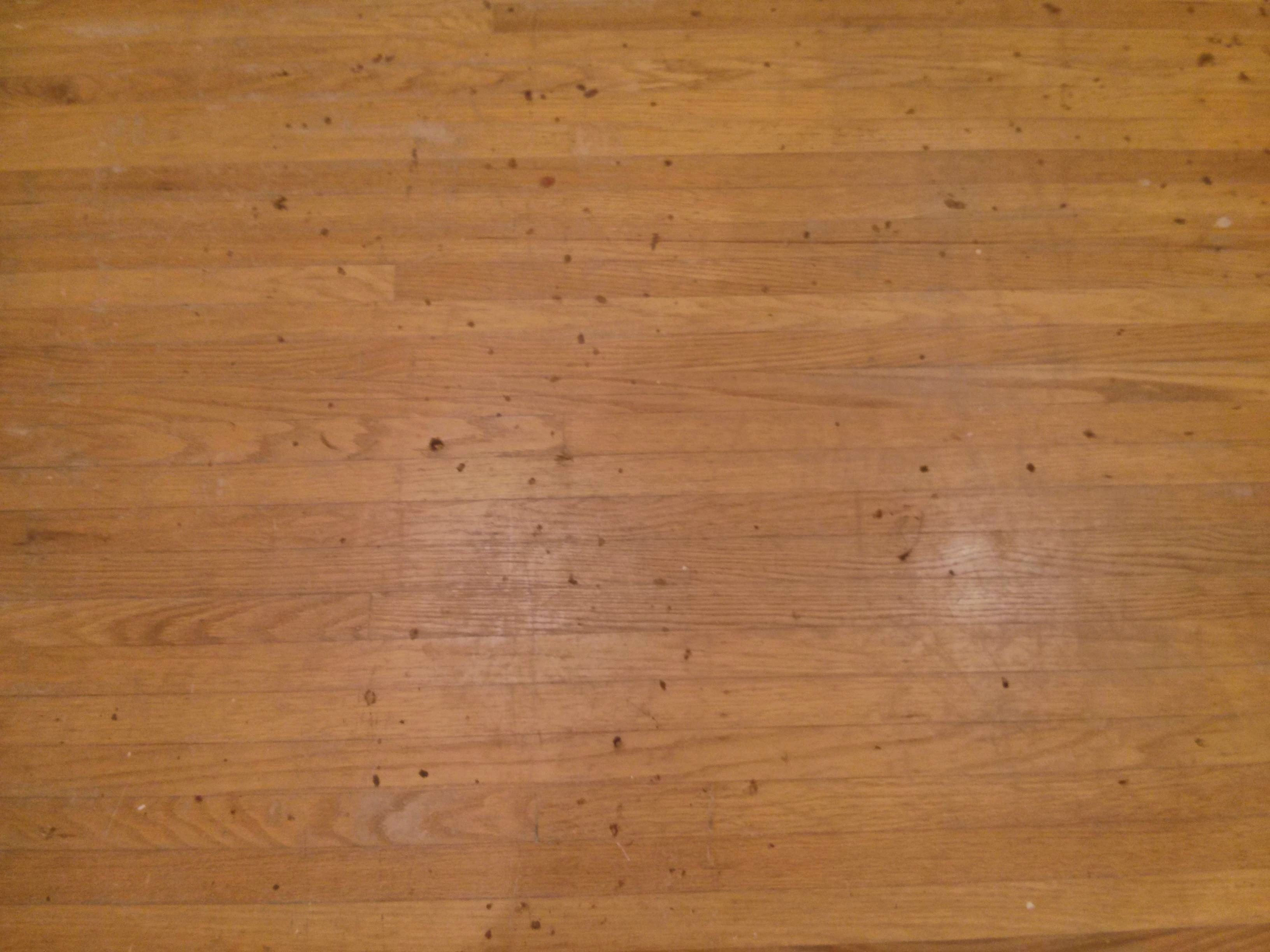 Do It Yourself Wood Floor Refinishing Without Sanding Refinishing