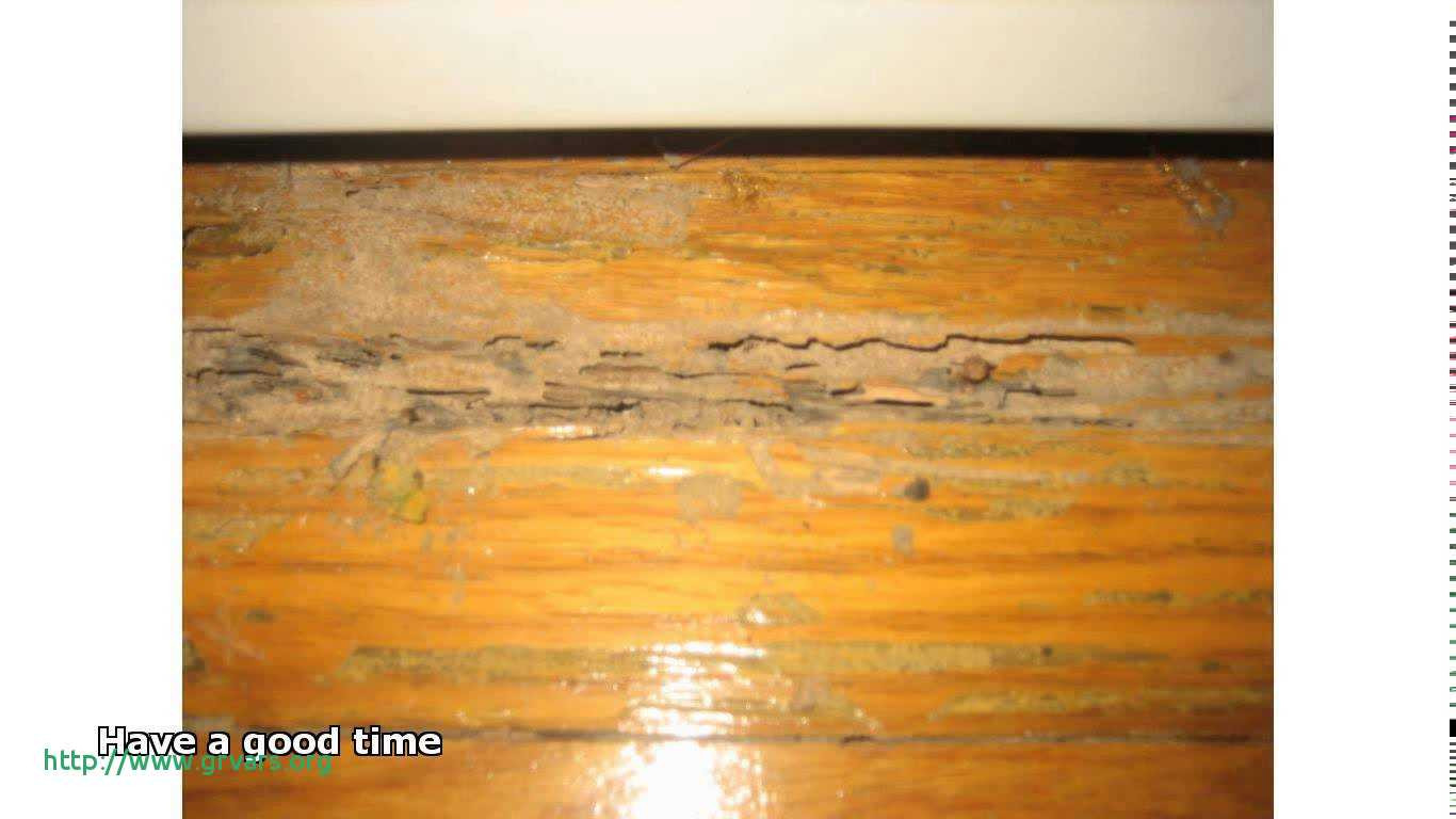 Electric Mops for Hardwood Floors Of 19 Meilleur De What is the Best Mop for Wooden Floors Ideas Blog Intended for What is the Best Mop for Wooden Floors Frais Cleaning Old Hardwood Floors