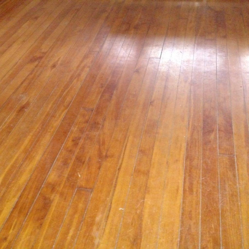 glue down engineered hardwood flooring of human urine on wood floors http dreamhomesbyrob com pinterest intended for human urine on wood floors