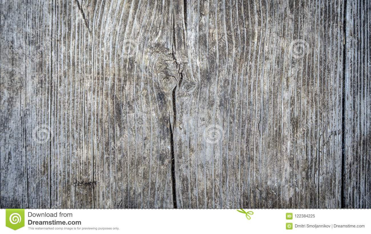 gray hardwood floor colors of background image od tree bark stock image image of grey material intended for download background image od tree bark stock image image of grey material 122384225