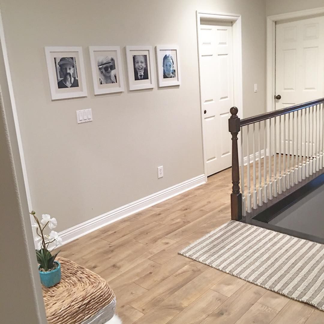 Grey Hardwood Floor Color Combinations
