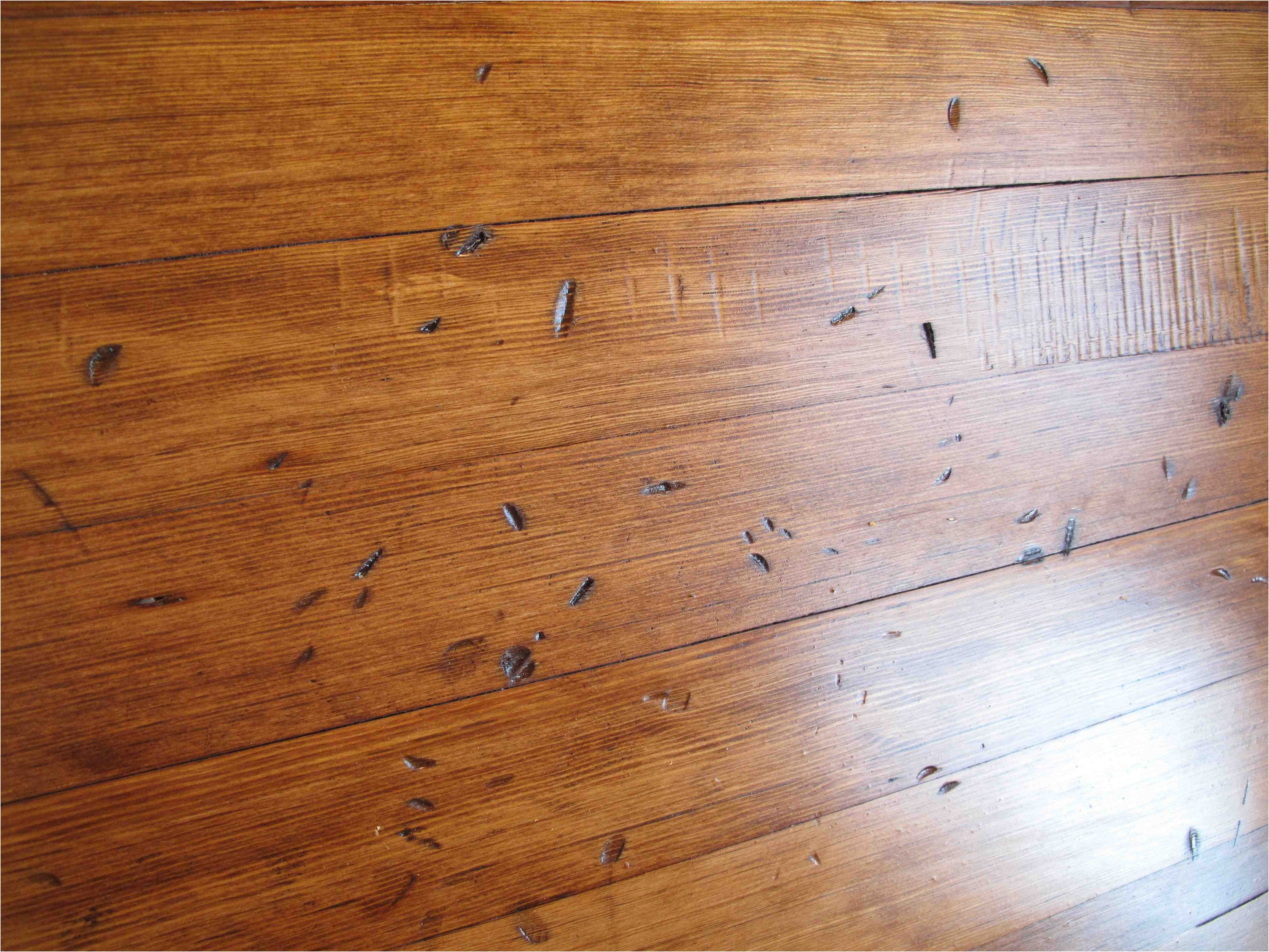 13 Trendy Hardwood Floor Cleaning System 2021 free download hardwood floor cleaning system of 37 best unfinished bamboo floor stock flooring design ideas with can i stain laminate flooring inspirational can you stain laminate flooring lovely how to s