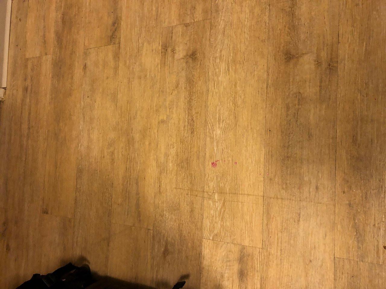hardwood floor installation kalamazoo of holiday inn express irondequoit 93 i¶1i¶0i¶9i¶ updated 2018 prices with regard to holiday inn express irondequoit 93 i¶1i¶0i¶9i¶ updated 2018 prices hotel reviews ny tripadvisor