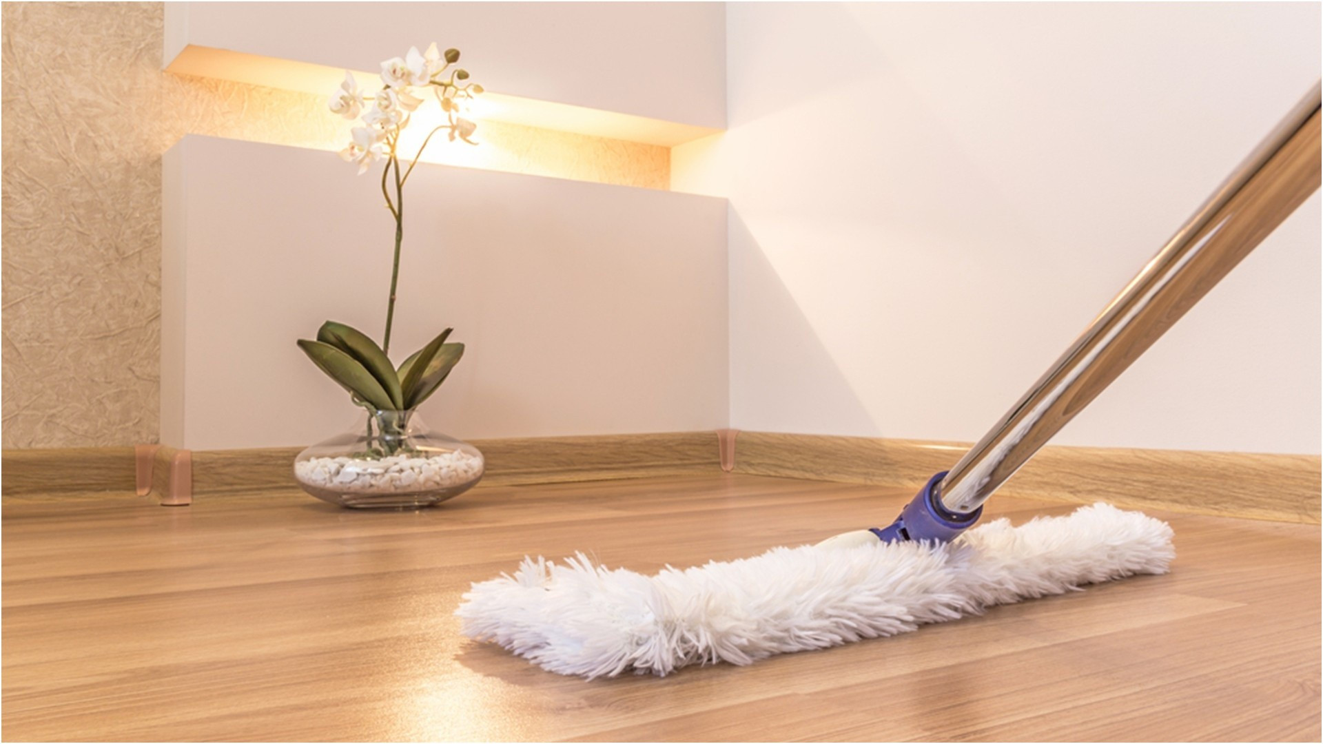 26 attractive Hardwood Floor Installation Nashville Tn 2021 free download hardwood floor installation nashville tn of 17 awesome what to use to clean hardwood floors image dizpos com intended for what to use to clean hardwood floors inspirational how much laminate