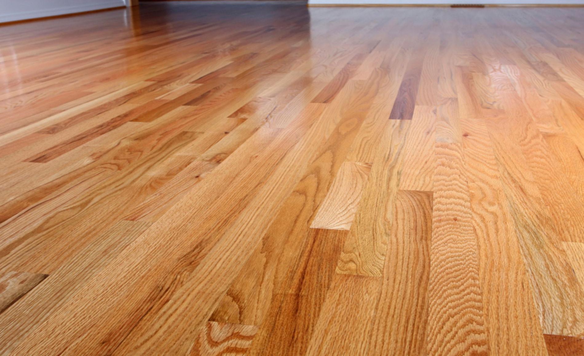 Hardwood Floor Refinishing Bridgeport Ct Of Mcwoodfloors Installing and Refinishing Hardwood Flooring In Livingroom Slide 3