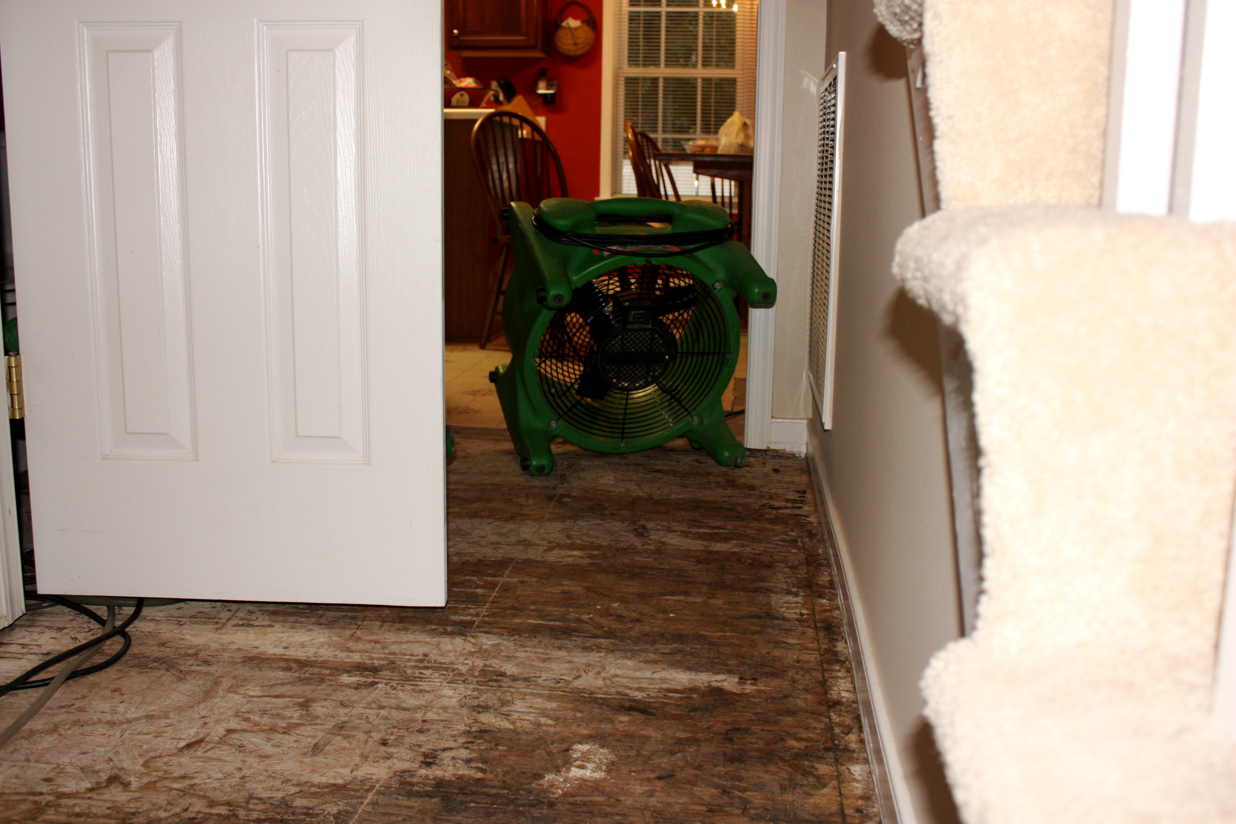 hardwood floor refinishing denver of dealing with flood damage to your floors throughout air mover flood damaged floor