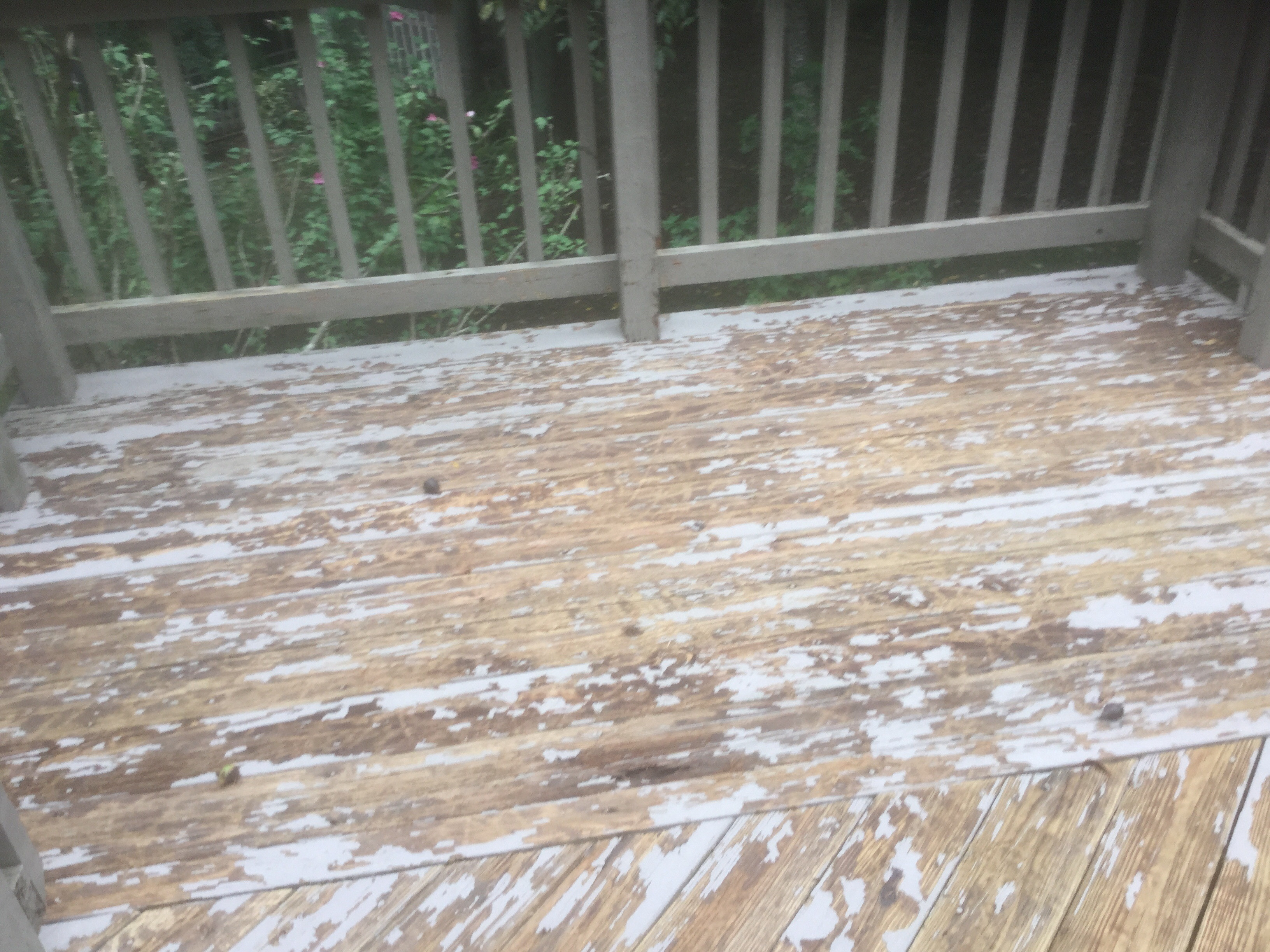 hardwood floor refinishing fredericksburg va of class action lawsuit against olympic rescue it best deck stain pertaining to image