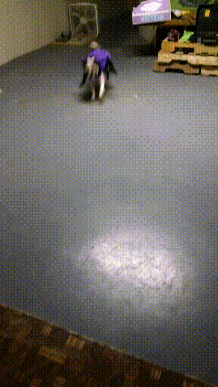 Hardwood Floor Refinishing Quincy Ma Of Http Imgur Com Gallery Zamdnma Daily Http Imgur Com Zamdnma Throughout Cxqjp9p
