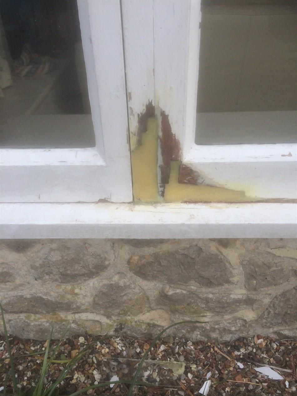 hardwood floor repair san antonio of home repair care throughout several repairs using dry flexa 4