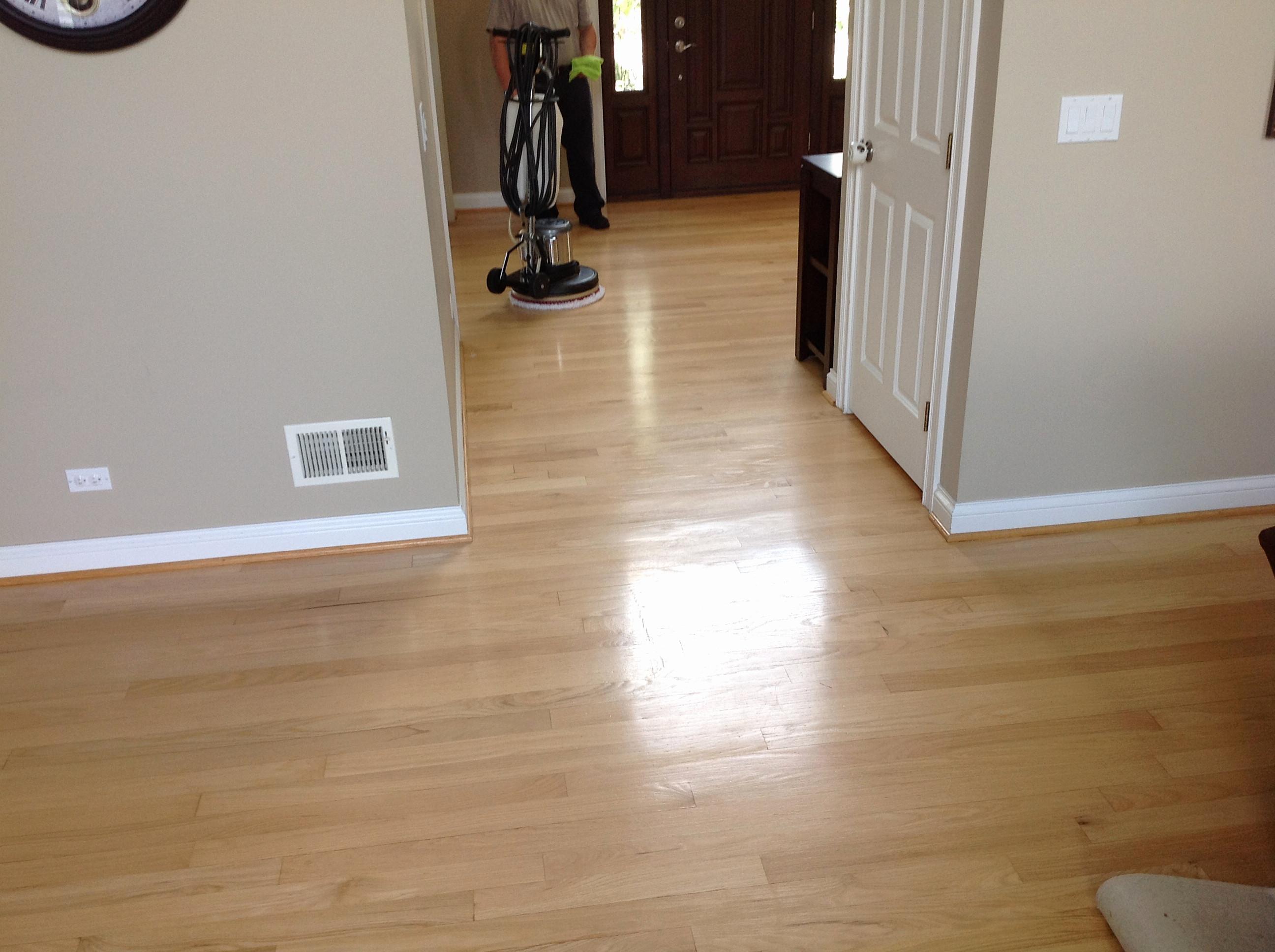 hardwood floor steam cleaner of wood floor cleaner floor floorod cleaning hardwood carpet lake pertaining to wood floor cleaner floor floorod cleaning hardwood carpet lake forest il rare image