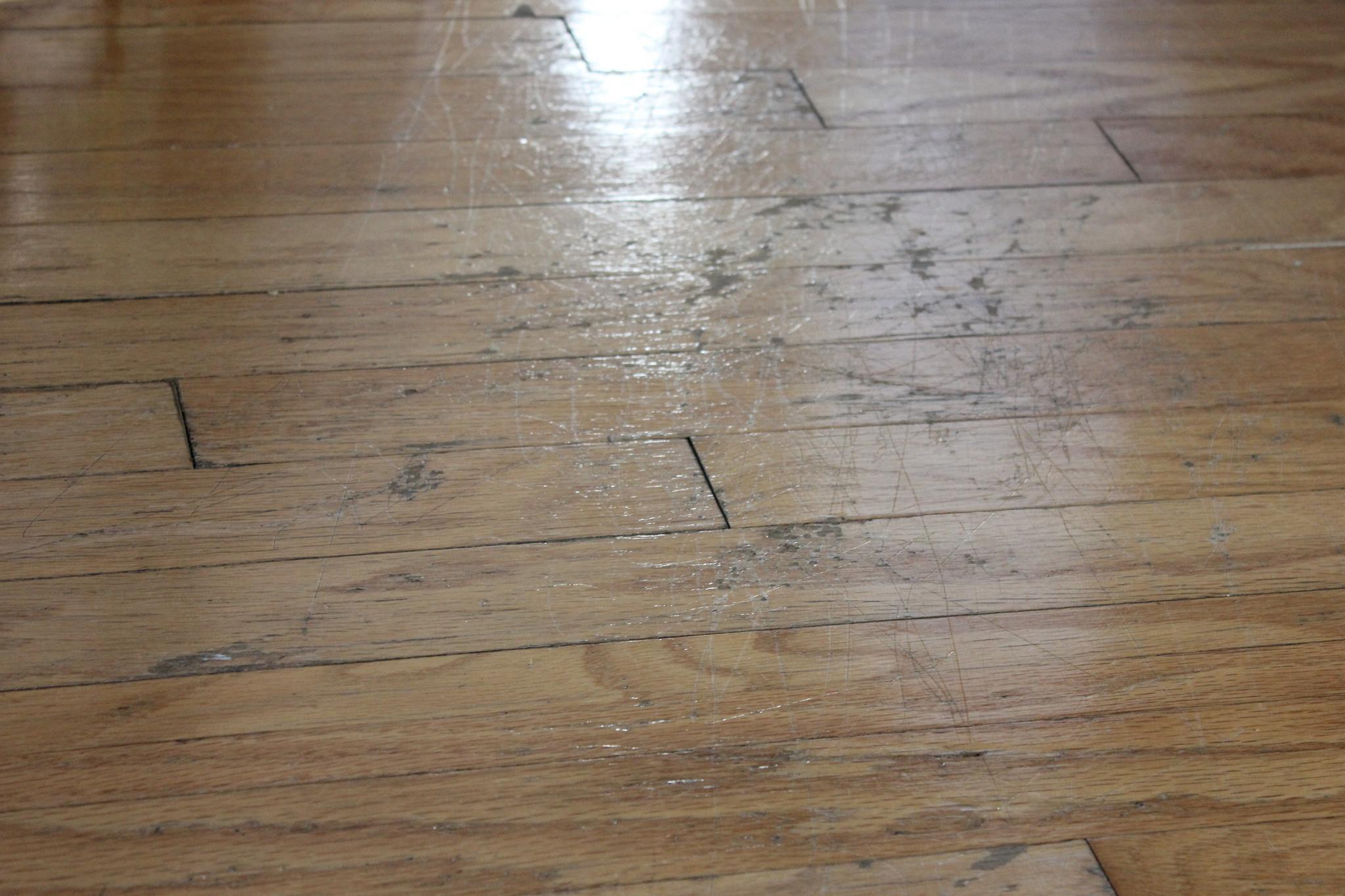 hardwood floor varnish of diy experiment a quick fix for scratched hardwood floors money within 15624328214 3c7ba6f6ff k