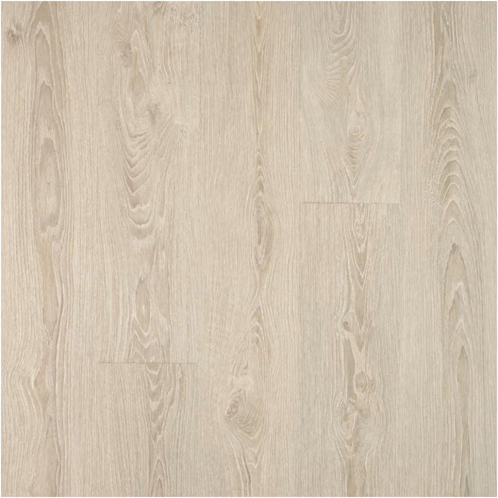 Hardwood Flooring at the Home Depot Of 16 Elegant Home Depot Hardwood Floor Photograph Dizpos Com In Home Depot Hardwood Floor Fresh Wood Flooring Stores Near Me Galerie Hardwood Flooring Stores Near Photos
