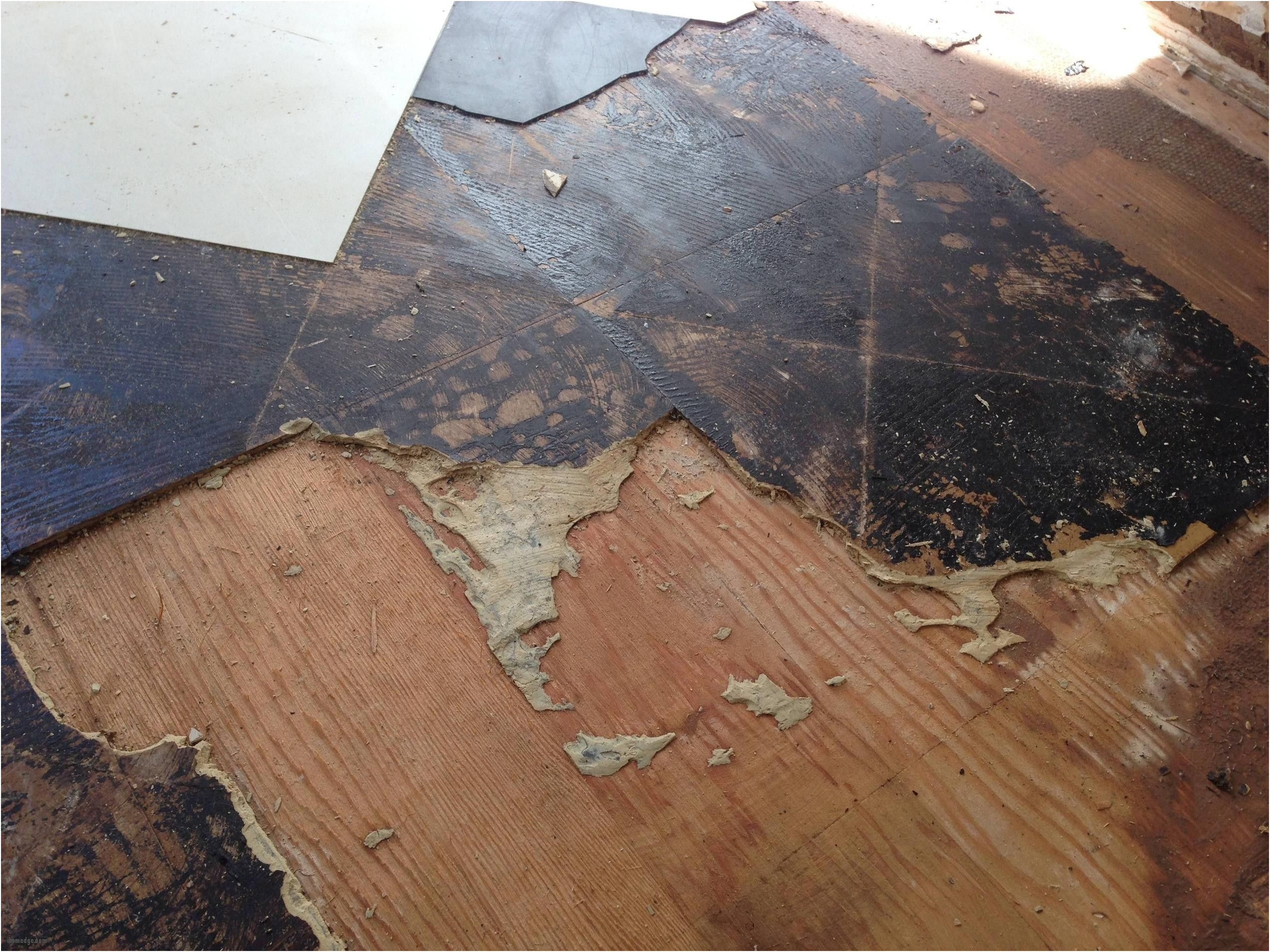 Hardwood Flooring for Sale Near Me Of Flooring On Sale Near Me Photographies 0d Grace Place Barnegat Nj for Flooring On Sale Near Me Fine Wonderful Vinyl Wood Flooring A Little Slice Of Hell Of