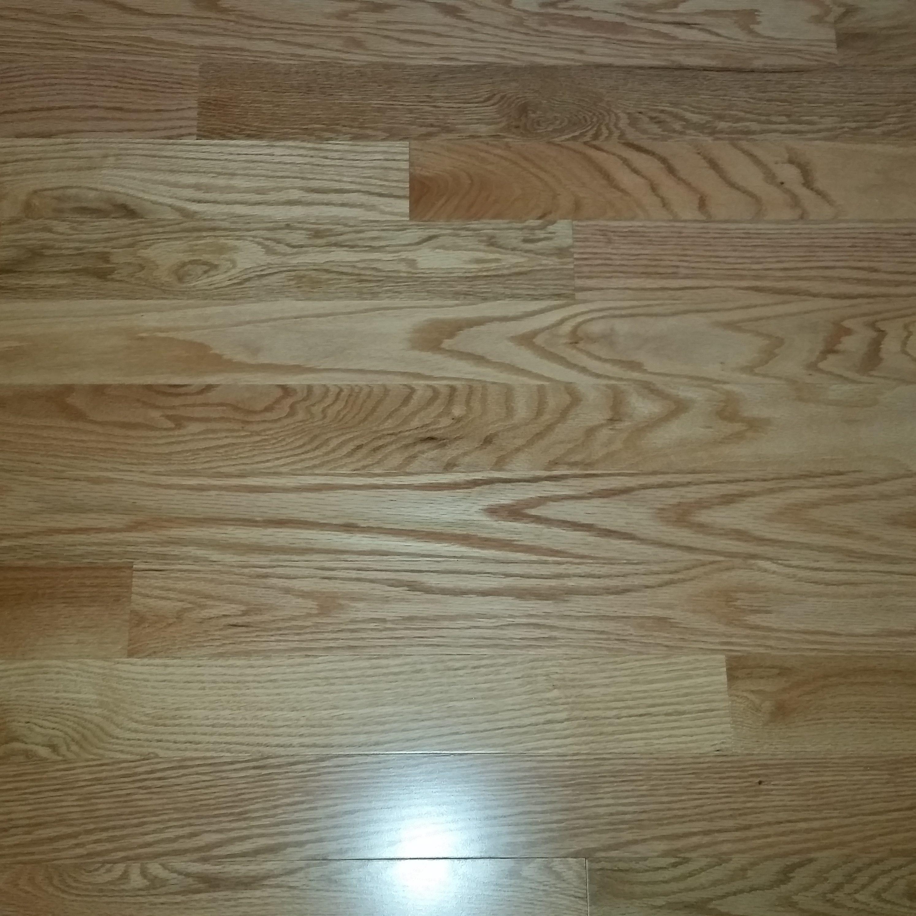 hardwood flooring richmond va of hardwood floor refinishing richmond va floor in hardwood floor refinishing richmond va can pets and hardwood floors coexist