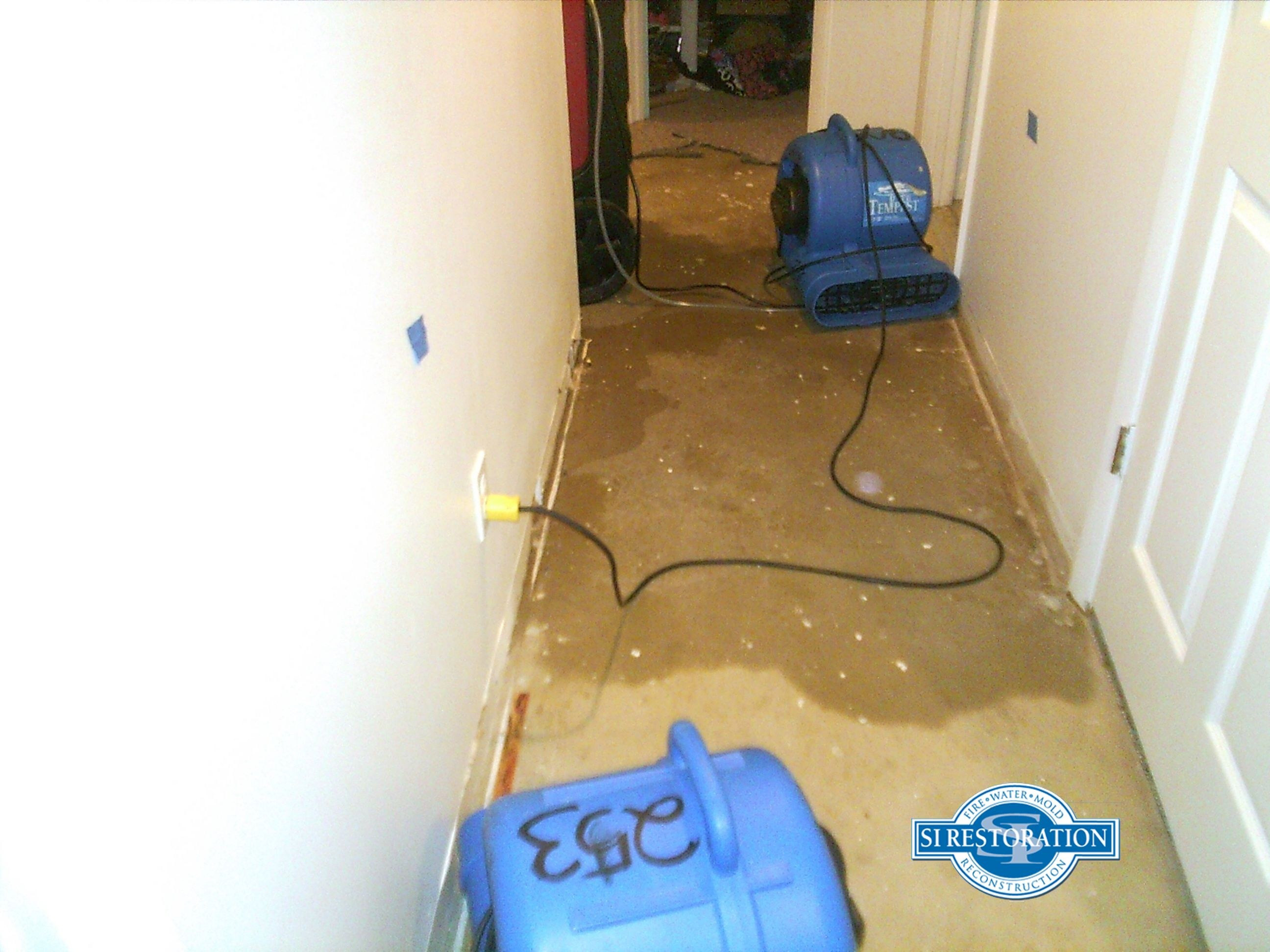 hardwood flooring riverside ca of how to clean mold off car carpet best of corvette carpet replacement intended for mold removal riverside ca