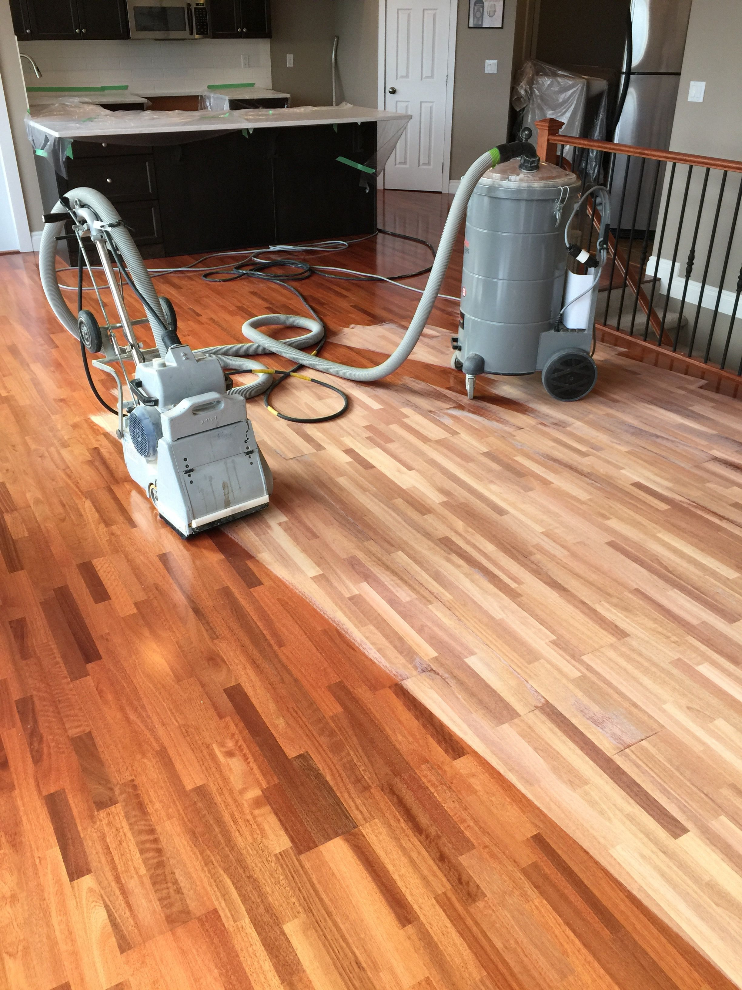 how to refinish hardwood floors with pet stains of how to refinish wood floors step by step evergreen hardwood floors within how to refinish wood floors step by step evergreen hardwood floors ensure that your hardwood floor