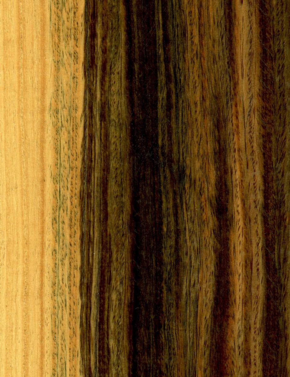 24 Popular Naf Hardwood Flooring Canada 2021 free download naf hardwood flooring canada of lignum vitae wikipedia in bulnesiasarmientoi wood01