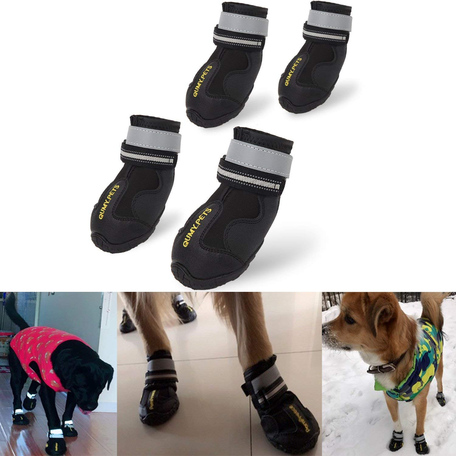 pets and hardwood floors of dog shoes hardwood floors dahuacctvth com intended for dog shoes hardwood floors