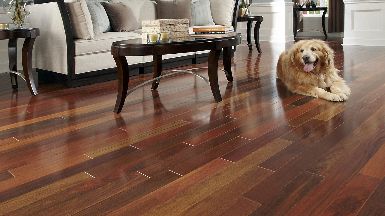prefinished hardwood floor cleaning tips of 3 4 x 3 1 4 brazilian walnut bellawood lumber liquidators inside bellawood 3 4 x 3 1 4 brazilian walnut