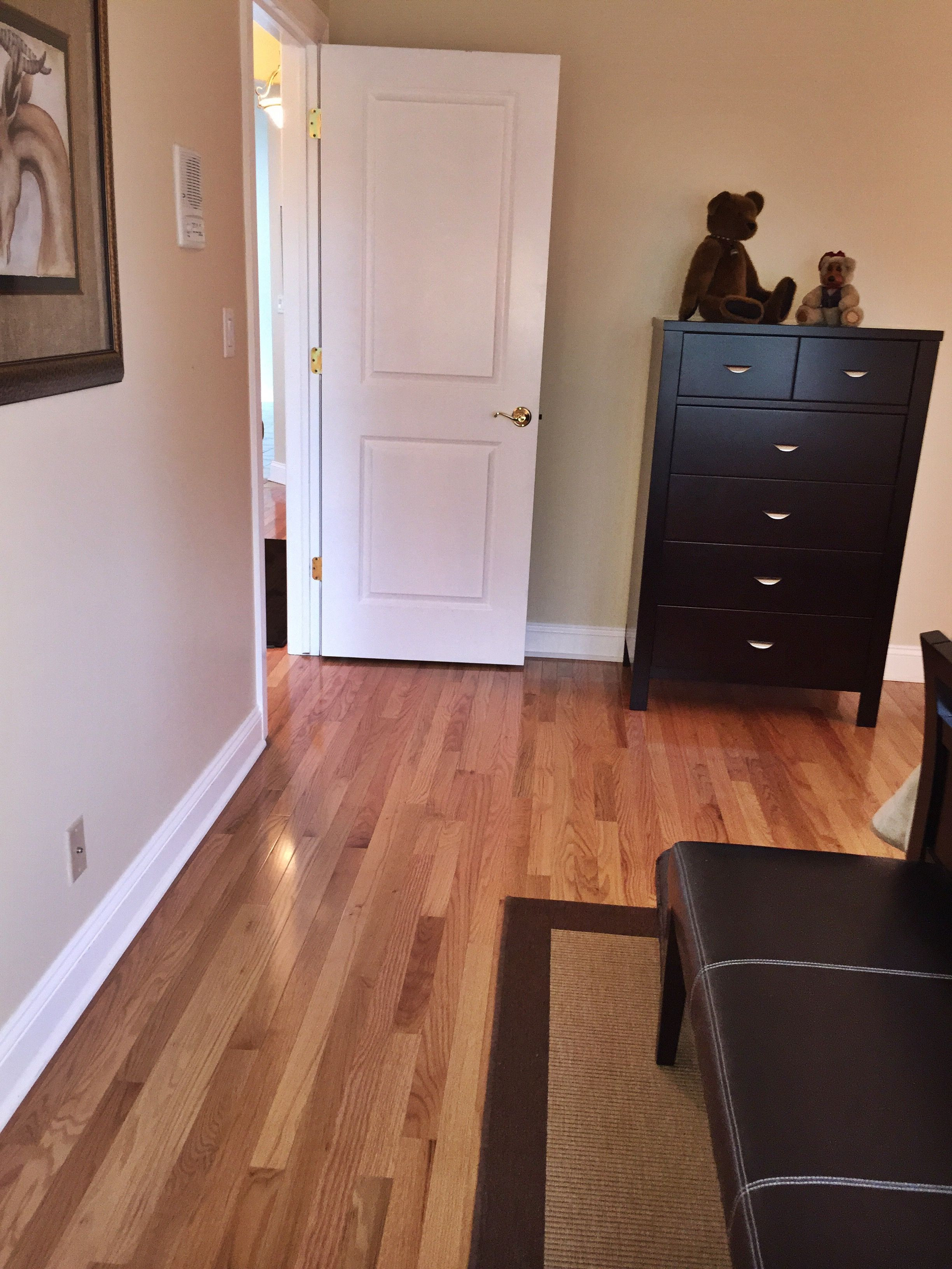 professional hardwood floor refinishing near me of hardwood floor refinishing chicago hardwood flooring somerset high in hardwood floor refinishing chicago hardwood flooring somerset high gloss 2 1 4 width natural red