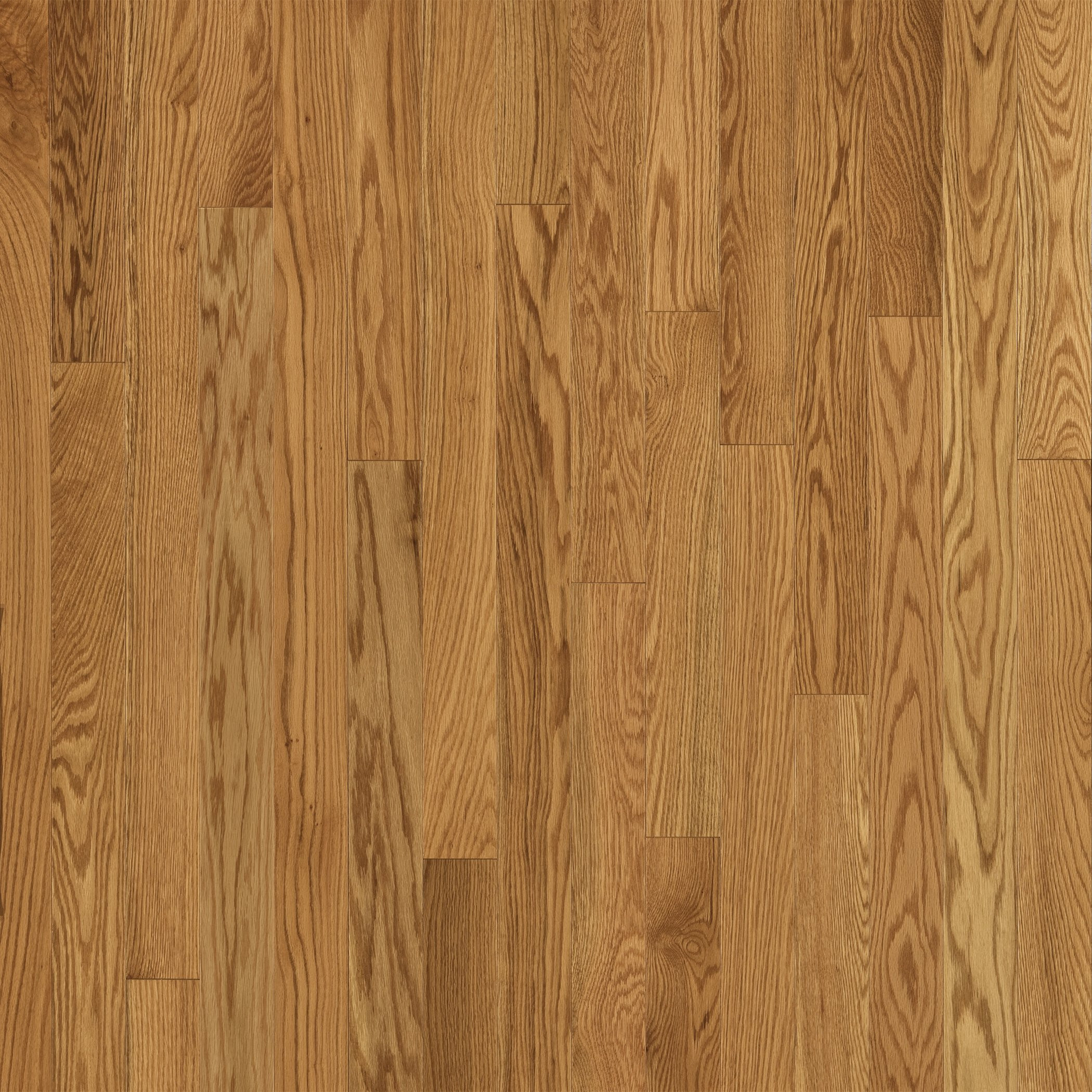 Red Oak Hardwood Flooring Cost Of Refinishing My Hardwood Floors Sanding Progress Wood Floor Water Damage Inside 28 Best Oak Floor Red Oak Natural Hardwood Flooring