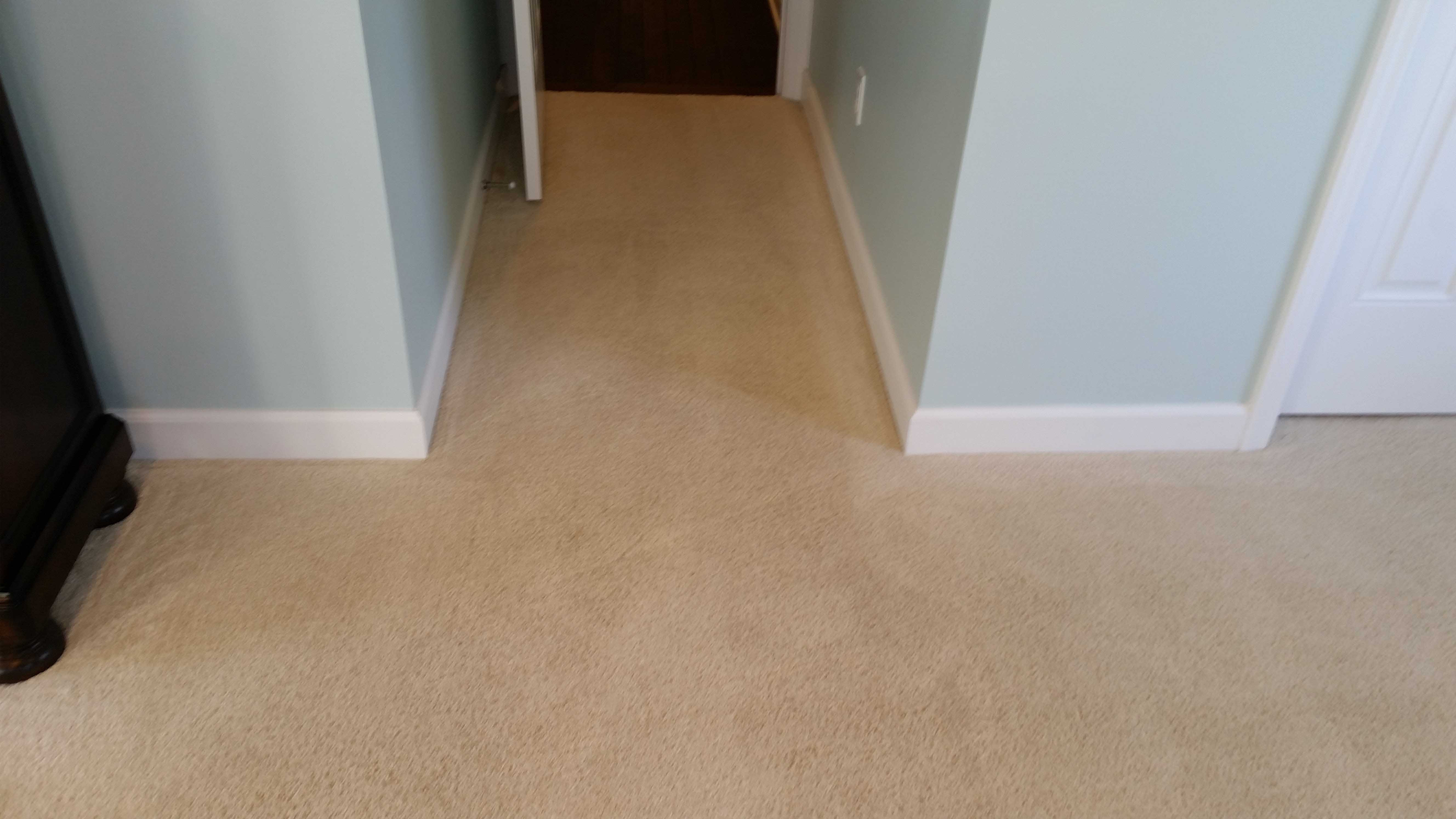 sandless hardwood floor refinishing products of cincinnati maintenance home cincinnati carpet cleaning services in fast drying capet cleaning