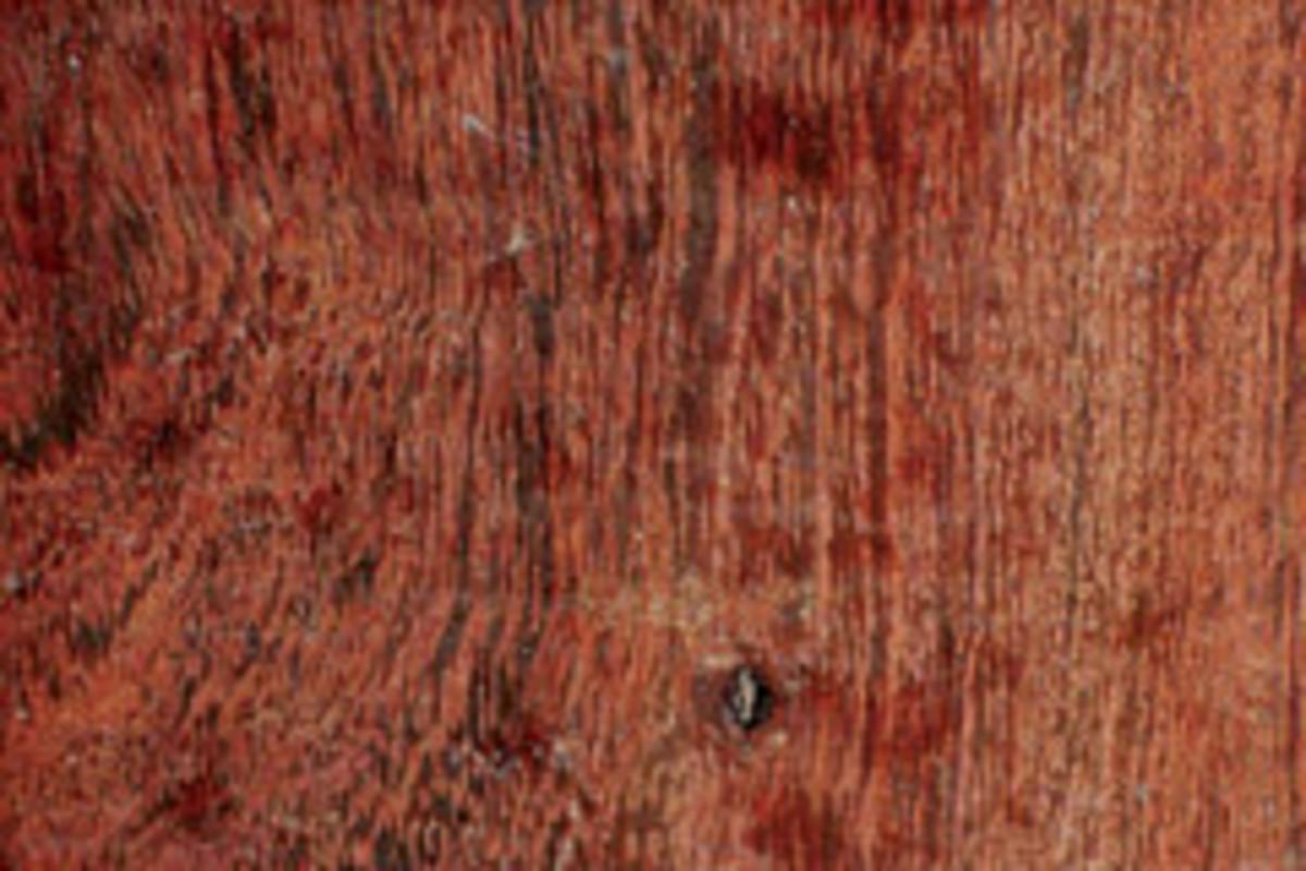 short leaf acacia hardwood flooring of camel thorn considered stunning in color woodshop news regarding image placeholder title
