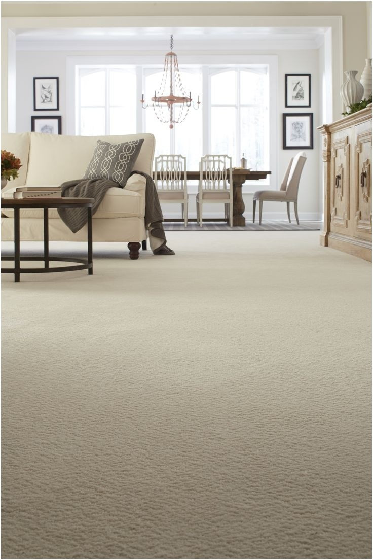 transition between tile and hardwood floor of the 44 lovely carpet to tile transition strip rugs on carpet pertaining to carpet to tile transition strip new carpet transition strip elegant wood floor to carpet transitions of