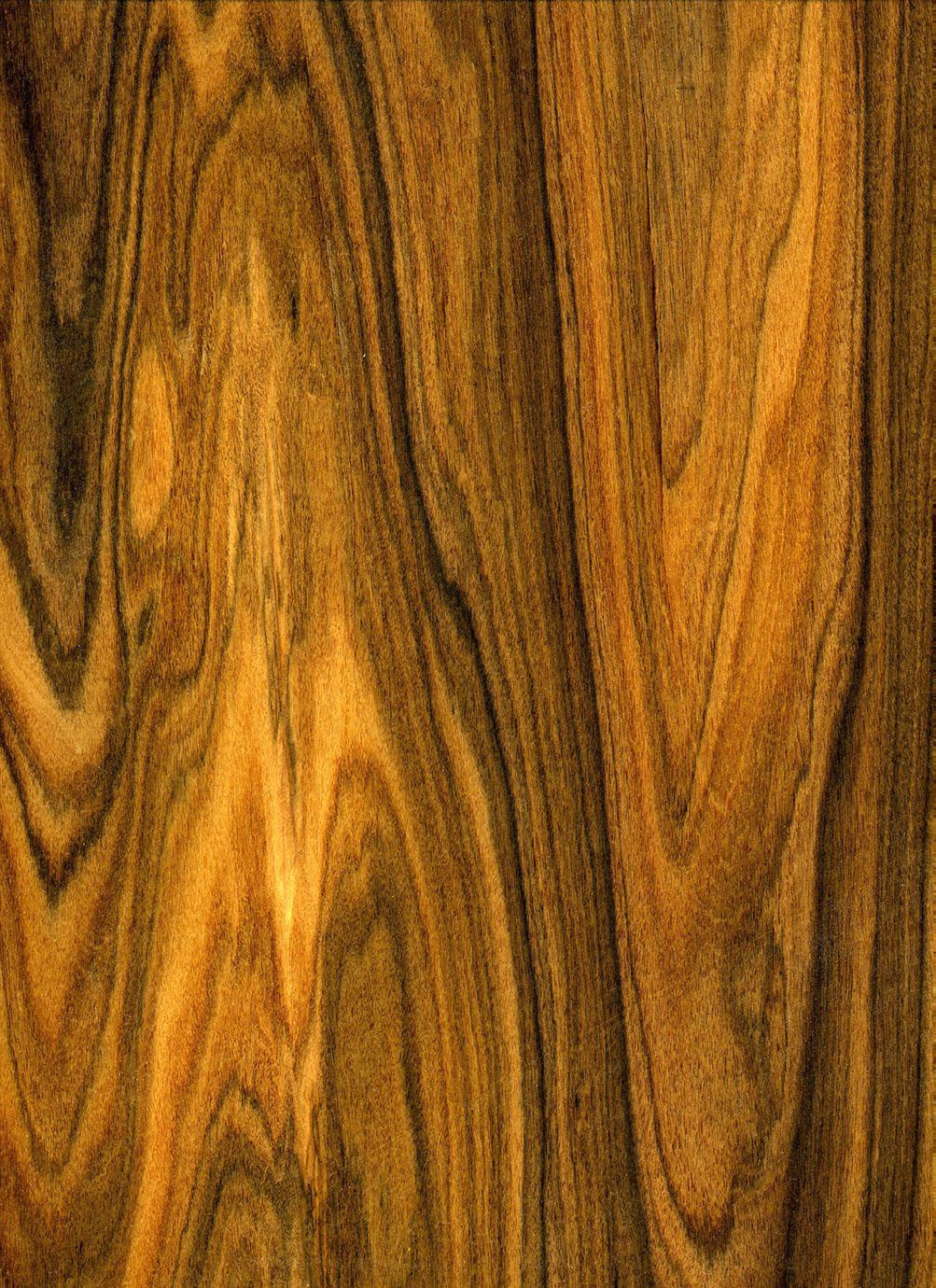 types of hardwood floors species of exotic lumber inc stocks over 130 species of exotic wood and regarding exotic lumber inc stocks over 130 species of exotic wood and domestic woods turning stock plywoods veneers boatbuilding lumber and offers millwork